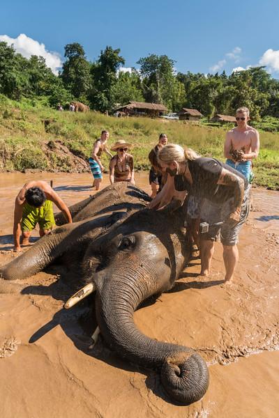 elephant-sanctuary-chiang-mai-12.jpg