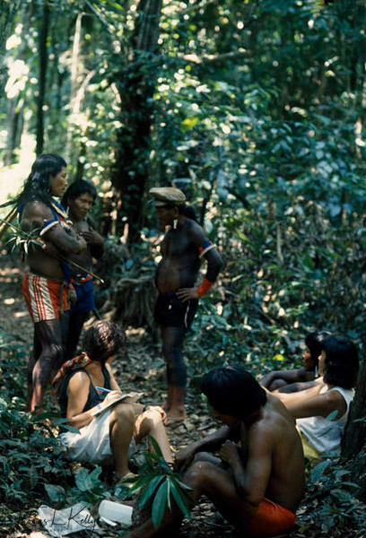 Magic and medicine are inseparable in the world's greatest rain forest. Forthousands of years countless herbs and plants have provided remedies andcures for what has ailed mankind.Brazilian Amazon Indians who specializes about the medicinal herbs take a group of Researchers to the rain forest to show the valuable medicinal plants.Kayapo, Brazilain Amazon.