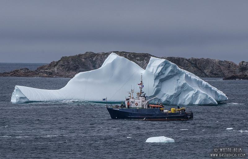 Iceberg 69    Photography by Wayne Heim