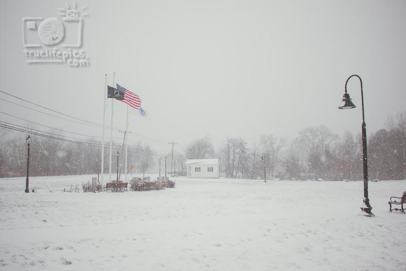 Snow - January 7, 2017 (4).jpg