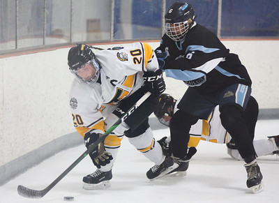 Traverse City Central hockey takes 2020 regional title