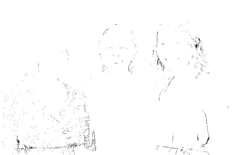 DSC09283.png