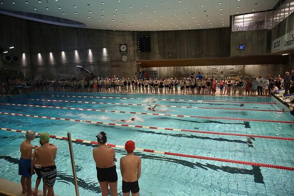 Skolesvømmestevnet 2014