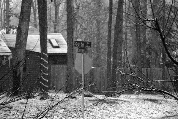 2008 01-19 Some Snow