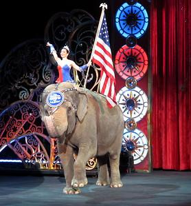 2016-01-16 (10 Photos) Circus