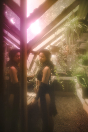 Kinsey in the Greenhouse