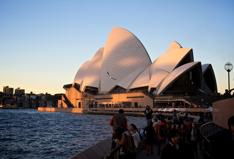 2011-07-12_Sydney-Market_Copyright_David_Brewster__176