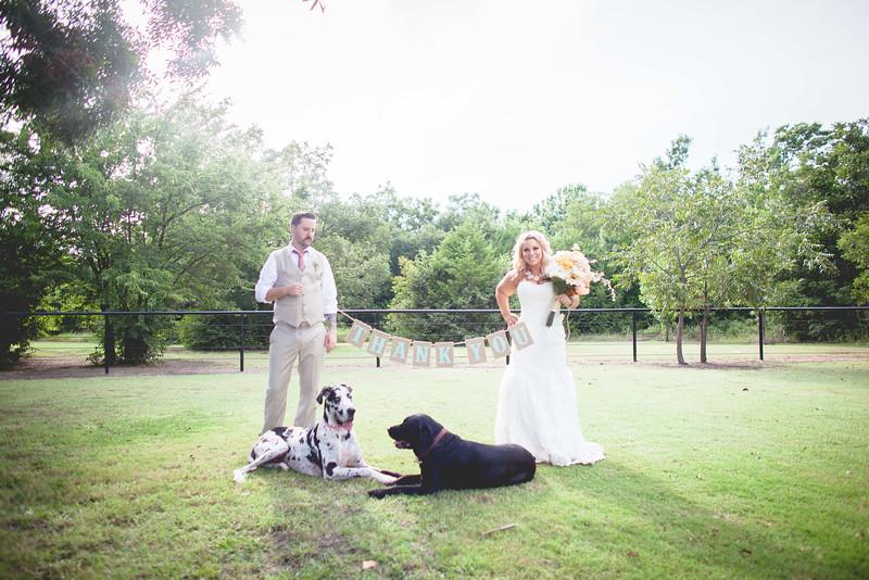 2014 09 14 Waddle Wedding - Bride and Groom-804.jpg