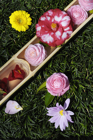 Hasedera Hanamatsuri 長谷寺の花祭