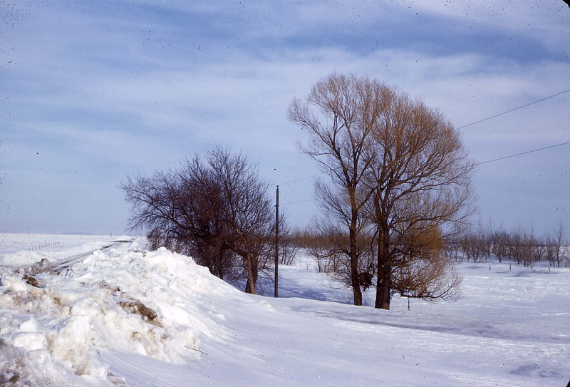 ARS033.  Trees, snowdrift - Mar 1966.jpg