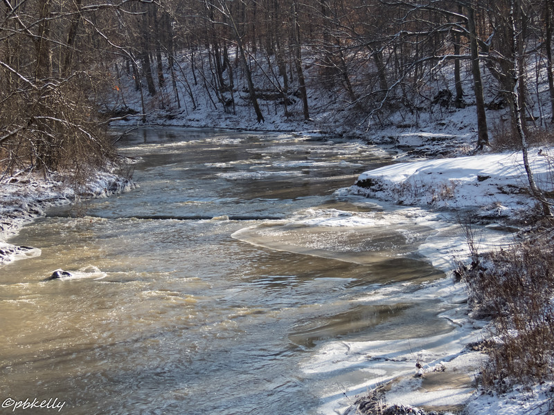 Black River 010717-3.jpg