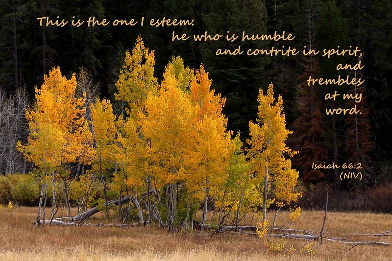 23_Isaiah66-2_KH_2010-10-16.jpg