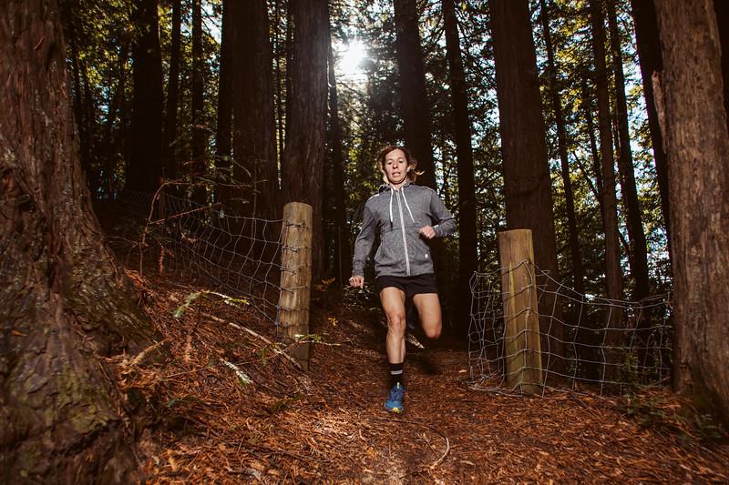 DT_redwoods_Jussioksanen_edited-2762.jpg