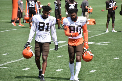 2019 Browns Training Camp