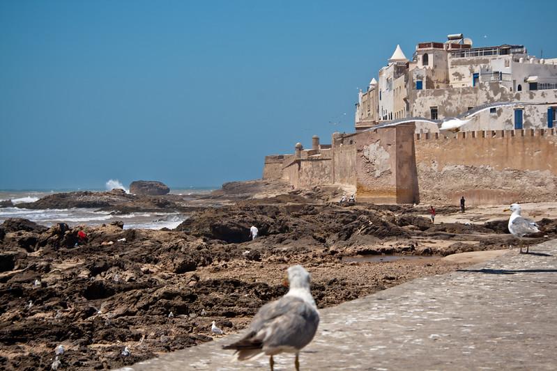 morocco_6207049590_o.jpg