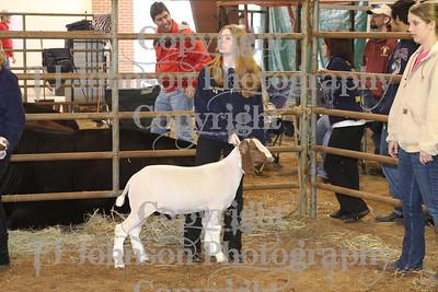 2010 KISD Class 2 Goats