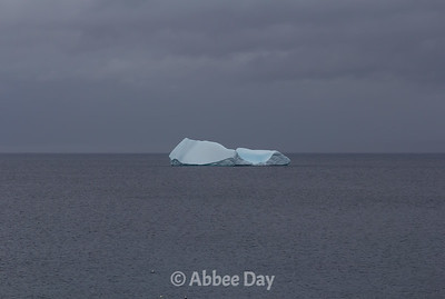 Close-up of first iceberg