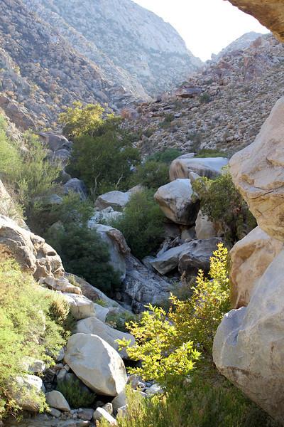 05 Cougar Canyon (120).JPG