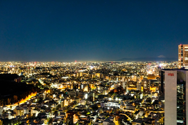 Tokyo -0368.jpg