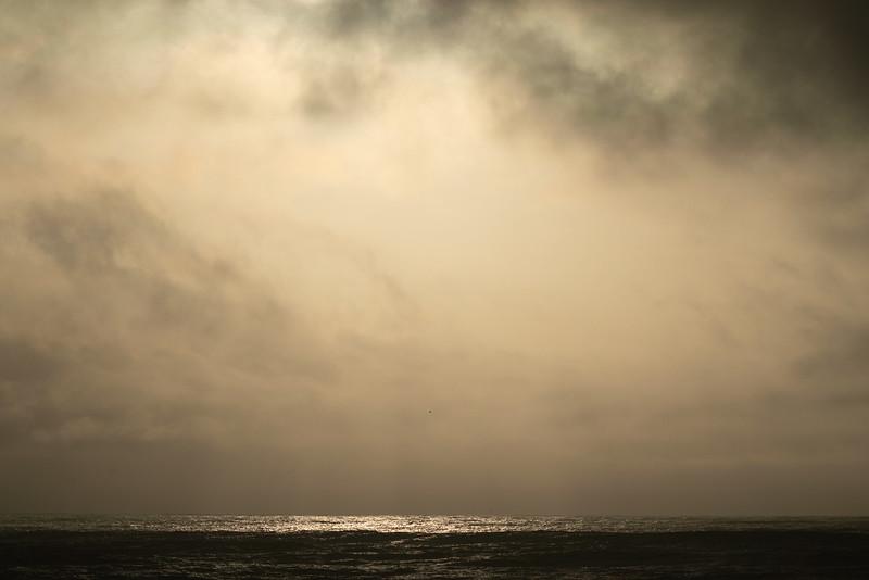 Ocean 81
