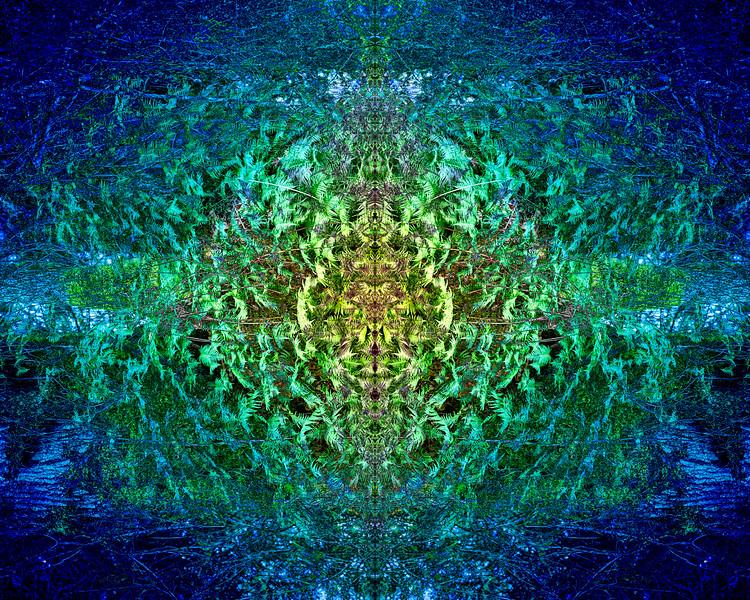 20210310-MAR_1524-mirror-1-3.jpg