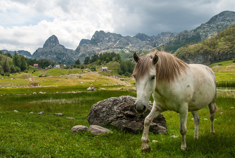 20130714_Montenegro_52.jpg