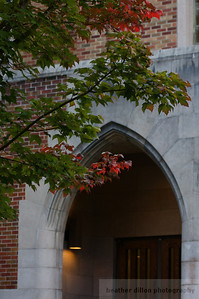 2008-10 UW Fall