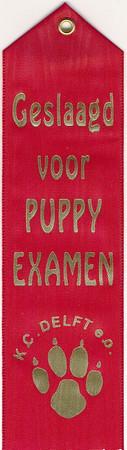 Puppy-diploma