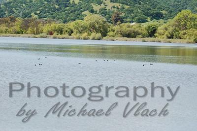 """Lagoon Valley"""" 4/6/10"""