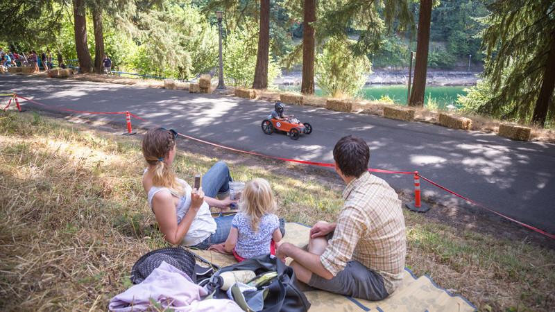 a good picnic show