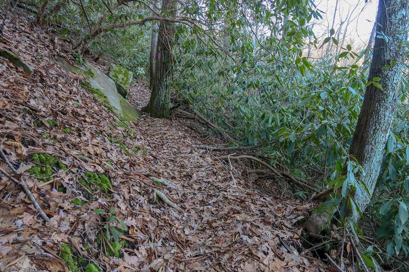 Naturaland Trust Trail -- 2,760'