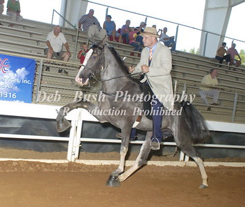 CLASS 6  TWO YR OLD - RIDERS CUP