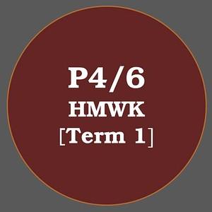 P4/6 HMWK T1