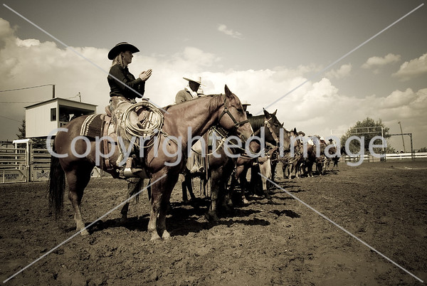 2010 PC Ranch Horse Competition