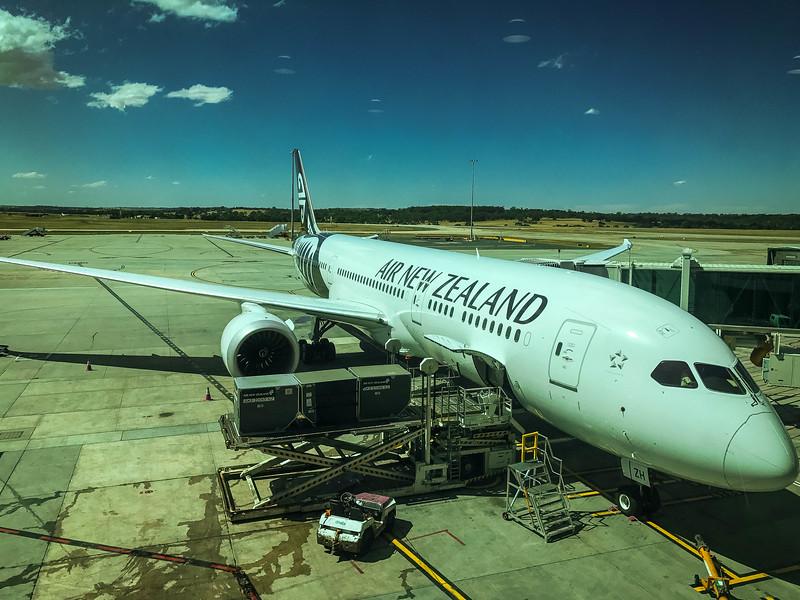 Auckland-66.jpg