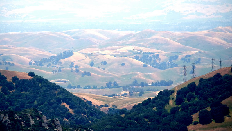 California Day 2 Mt Diablo 05-27-2017 20.JPG