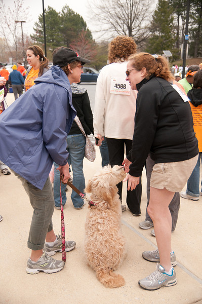 Towson MS Walk 002.jpg