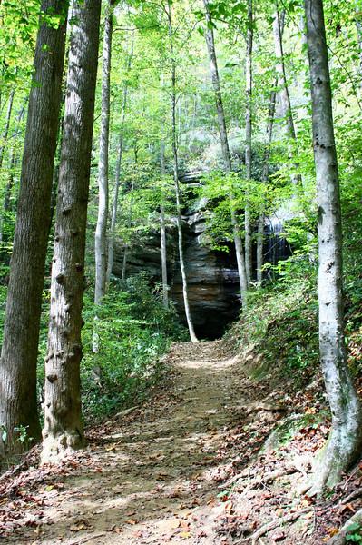 Pisgah Forest 9-30-12 38.jpg
