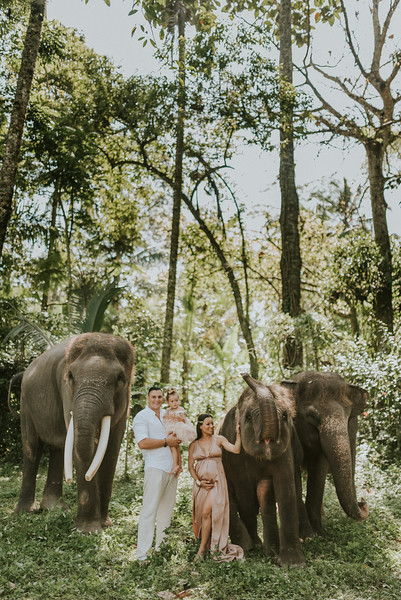 VTV_family_photoshoot_elephants_Bali_ (62).jpg