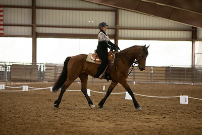 Horse 34