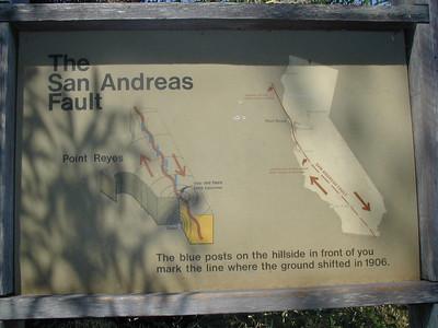 Point Reyes: Earthquake Trail,  Estero Trail, Mc Lure Beach, August 2002