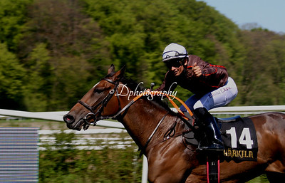 050518 Mowerina & Jockey Club Cup (L)