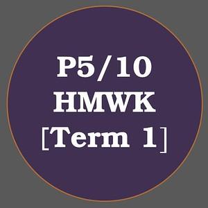 P5/10 HMWK T1