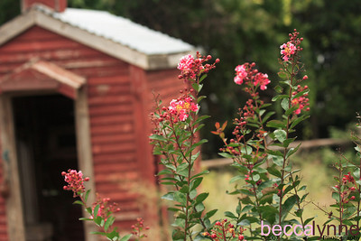 september 13. 2007 dallas arboretum