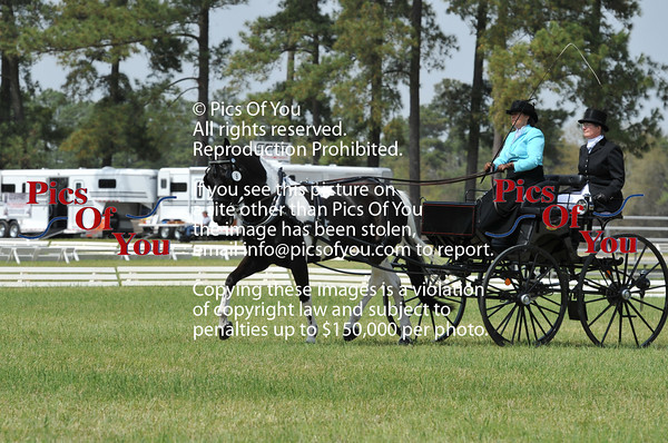 Southern Pines CDE 2014