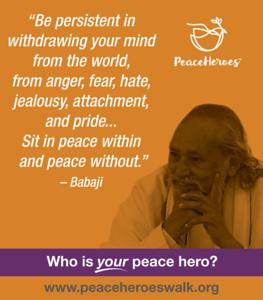 Peace Heroes Facebook Ads