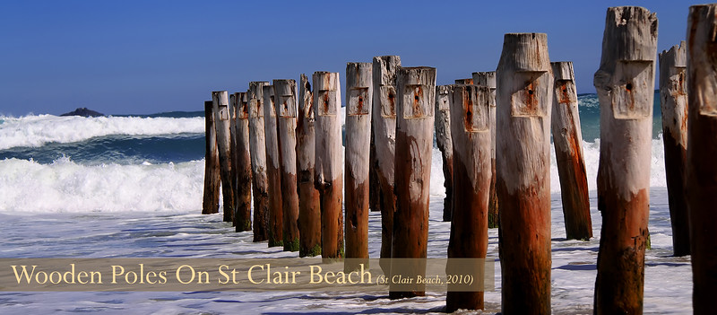 Wooden Piles on St Clair Beach Header.jpg