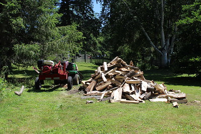 Log splitting day