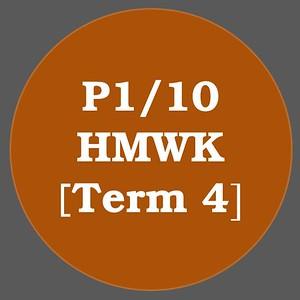 P1/10 HMWK T4