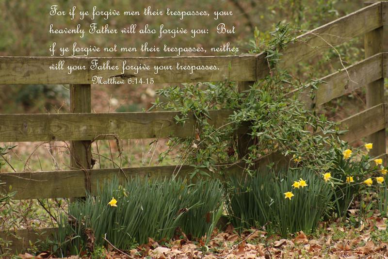 Mamaw - Matthew 6.jpg